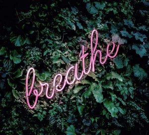 Pink neon sign saying breathe against a foliage background